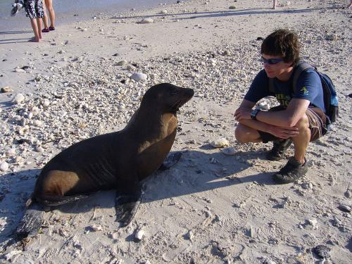 Touriste avec otarie aux Iles Galapagos